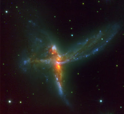 Cosmic bird.jpg