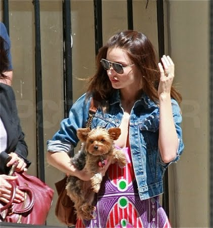 Shop Fairy Celebrity Pets Newly Engaged Miranda Kerr and her