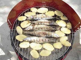 Morske ribice!