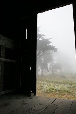Barn Door Open on Flickr by Orin Optiglot