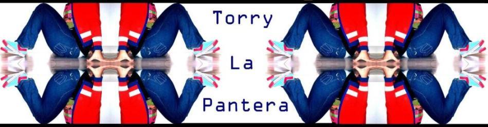 Torry La Pantera