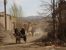 Donkey and cart in village