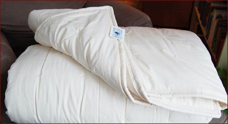 [Comforter]