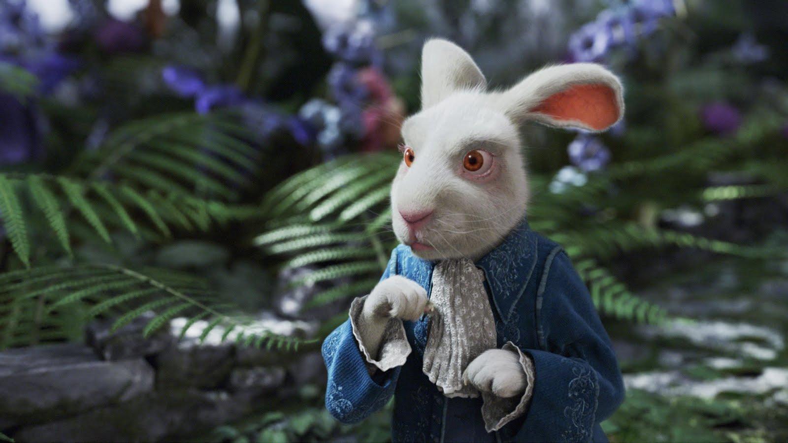 Perfecto Jessica Rabbit Que Enmarca El Conejo Roger Fotos - Ideas ...
