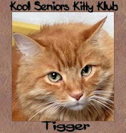 R U A Senior Kitty 8 + yrs.old?
