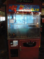 picture of the lobster crane game at the San Pedro Fish Market