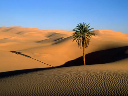 Sahara (North Africa): world's largest desert