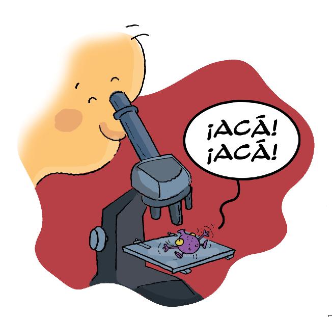 DIBUJOS MICROORGANISMOS - Imagui