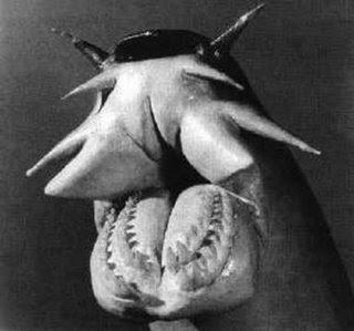 hagfish.jpg (320×299)