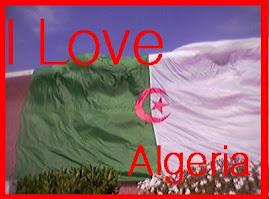 احبك يا جزائر
