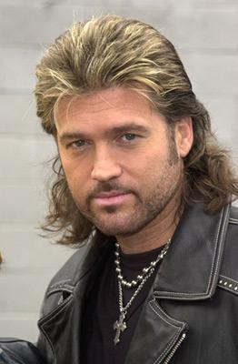 New Trend Mullet Hairstyles 2010