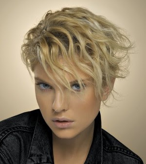http://1.bp.blogspot.com/_30PRmkOl4ro/SlCO4D6qMSI/AAAAAAAASWA/hgwQ-VGDLKI/s400/hot-short-hairstyle-for-summer2.jpg