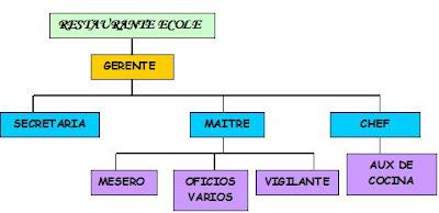 Restaurante ecole organigrama for Estructura de una cocina de restaurante