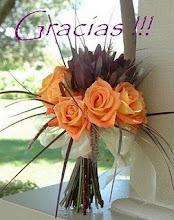 gracias a vos por brindarme tu hermosa amistad!!!