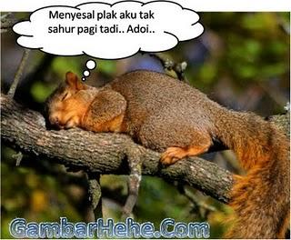 http://1.bp.blogspot.com/_31nk8wUv_aM/TGOp5WkmS-I/AAAAAAAAAbU/86tcmQADj0g/s1600/tupai+tupai+puasa.jpg