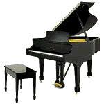 Tienda Musical. Small-grand-piano
