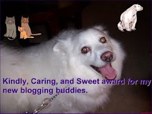 New Blogging Buddies Award