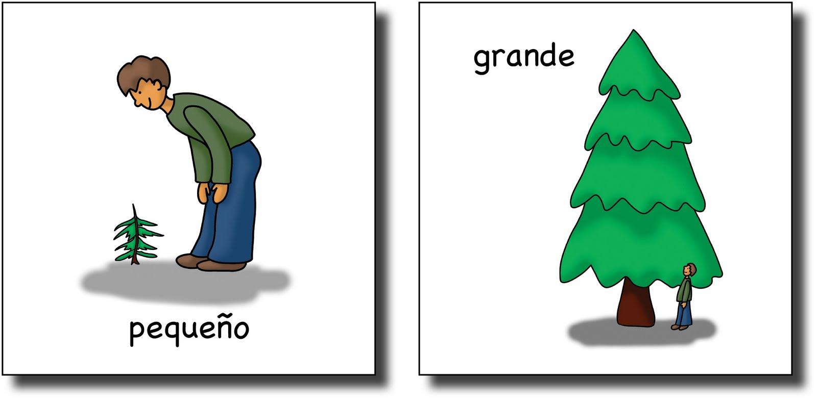 Spanish haircut vocabulary