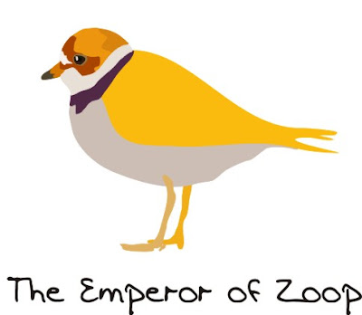 Emperor of Zoop, bird art of the day