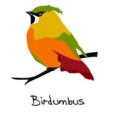 Birdumbus, bird art of the day