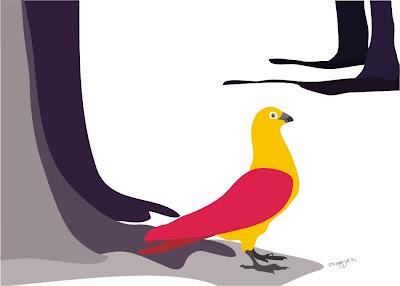 bird art, pigeon