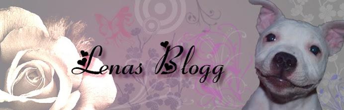Lenas Blogg