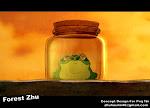Tao's Frog(2010)