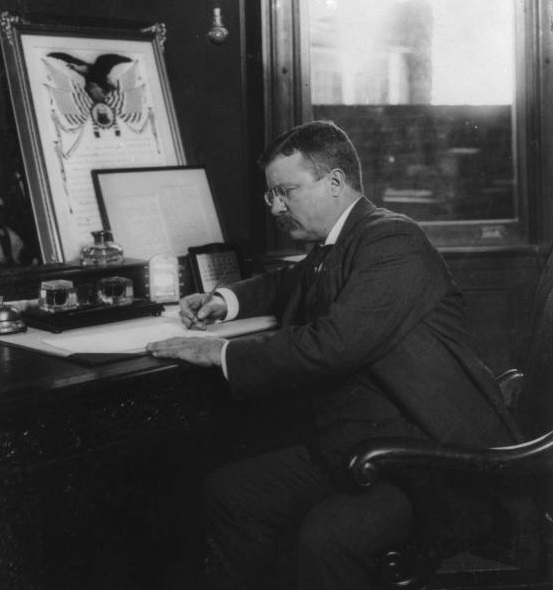 theodore roosevelts 3 major contributions essay