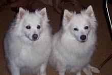 Sweet Bianca & Annie