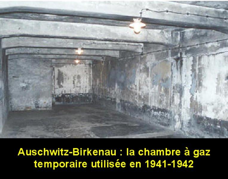D port s politiques auschwitz le convoi du 6 juillet for Auschwitz chambre a gaz