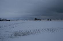 Vår utsikt en vinterdag