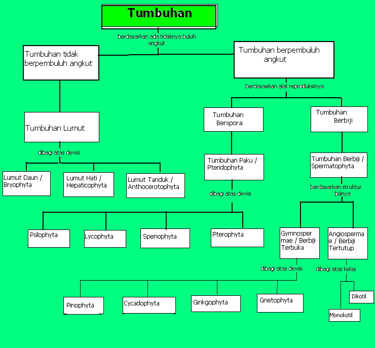 Tumbuhan paku - ostrich fern This is your index.html page