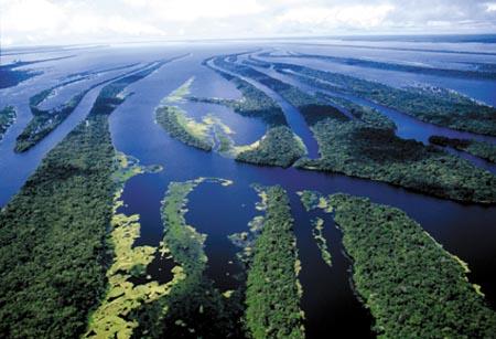 Anavilhanas no rio Negro