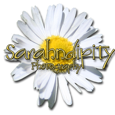 Sarahndipity Photography