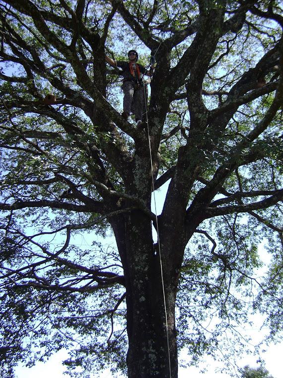Treinamento na Morada do Sol - Uberlândia - MG