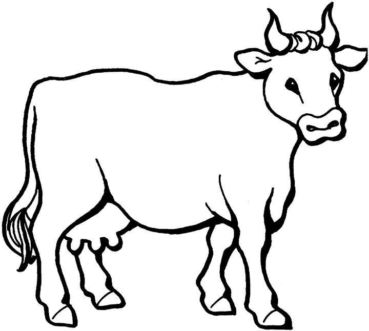 Patron para hacer vaca de foami - Imagui