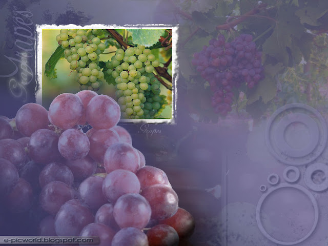 grapes fruit wallpaper