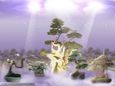bonsai , bonzai fantasy garden wallpaper 3
