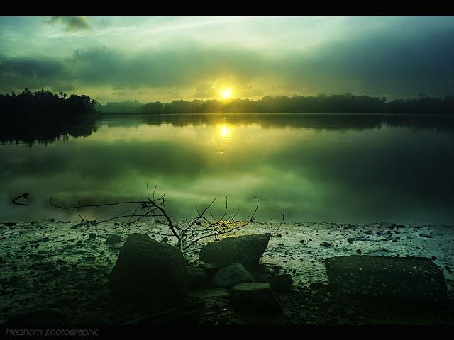 Foggy sunrise picture