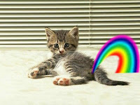 a kitten crapping a rainbow, what could be fricken cuter than that!