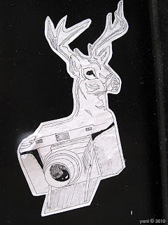 stag camera