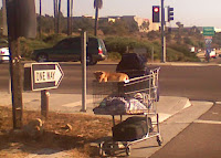 Homeless Doggy
