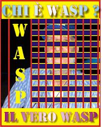 Questa è una vera foto di Wasp