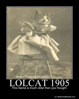 Lolcat 1905 Demotivational Poster