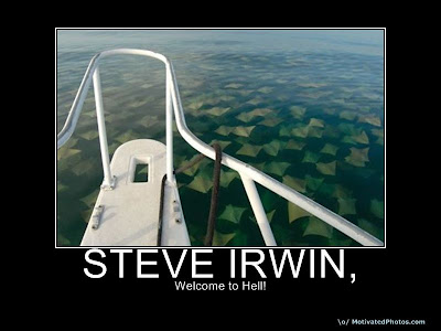 Steve Irwin Demotivational Poster