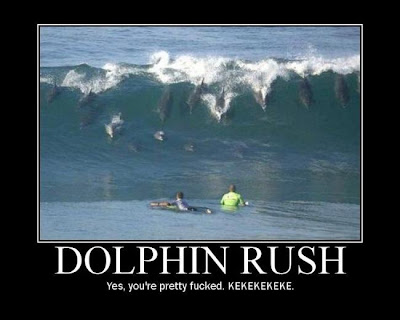 Dolphin Rush Demotivational Poster