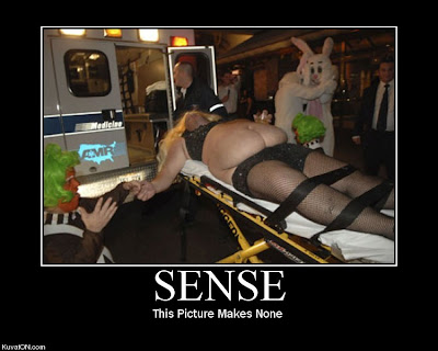 Sense Demotivational Poster