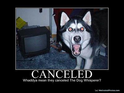 Canceled Demotivational Poster