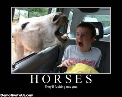 Horses Demotivational Poster
