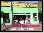FLORICULTURA EMA FLOWER